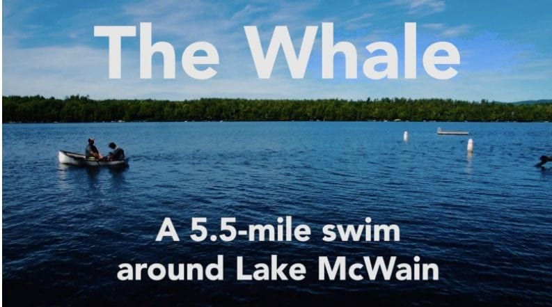 The Whale Watch